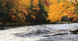 View of Brilliant foliage and rapids at Algonquin Provincial Park, Canada