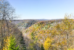View of canaan valley mountains in Blackwater falls state park in West Virginia during colorful autumn fall season with yellow foliage on trees