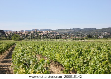 View of Caromb village and vineyard in Vaucluse, Provence, France