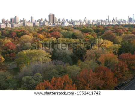 View of Central Park in Autumn, Fall Colors, Skyline in Background