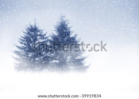 View of christmas trees through snow. Blue sky, snowflakes, trees and fog.
