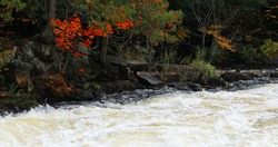 View of Colorful foliage and rapids at Algonquin Provincial Park, Canada