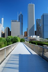 View of Downtown of the city of Chicago