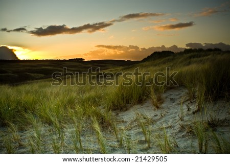 View of dunes at sunset