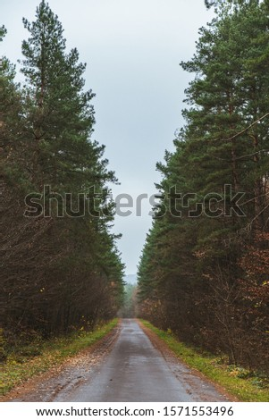 view of empty autumn road