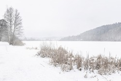 View of frozen lake, snow lies on branches, grass, trees, winter landscape