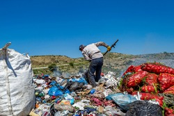 View of garbage field in trash dump or open landfill, food and plastic waste products polluting in a trash dump, Workers hands sorting garbage for recycling.