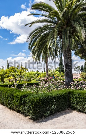 View of Garden of the Ramparts (Jardines de los Adarves) near the entrance of the Alcazaba. Granada, Andalusia, Spain. - Shutterstock ID 1250882566