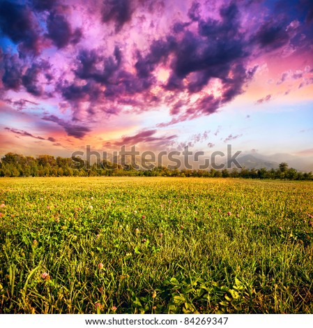 View of grass field, trees and mountains at dramatic purple sky with clouds background