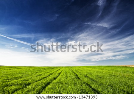View of green meadow blue sky and white clouds.
