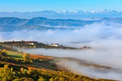 View of hills and vineyards covered with morning fog in autumn in Piedmont, Northern Italy.