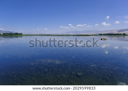 View of Hula Lake as seen from the floating bridge observation platform, Hula Nature Reserve, Hula Valley, Upper Galilee, Northern Israel, Israel