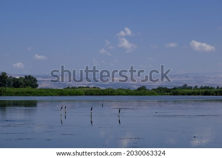 View of Hula Lake as seen from the floating bridge observation platform, Hula Nature Reserve, Hula Valley, Upper Galilee, Northern Israel, Israel.