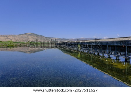 View of Hula Lake with the covered observation platform, Hula Nature Reserve, Hula Valley, Upper Galilee, Northern Israel, Israel.