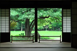 view of japanese traditional garden