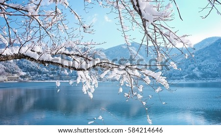 View of lake trees and mountains in snowy #584214646