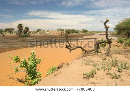 View of landscape with muddy river, Kenya