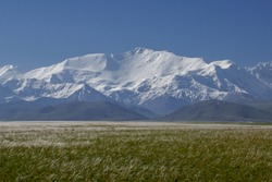 View of Lenin Peak nowadays Ibn Sina peak in the snow-capped Trans-Alay or Trans-Alai mountain range in southern Kyrgyzstan with silver grass in the foreground