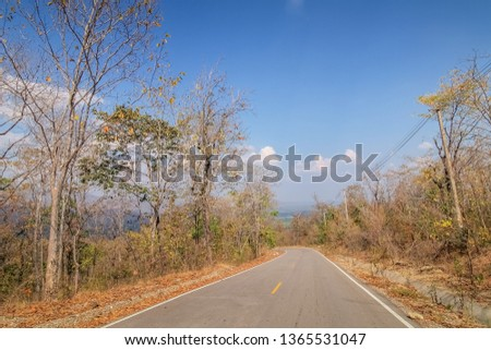 view of long road with many dry trees on side road and blue sky background, Mae Ya Waterfall, Ban Luang, Chom Thong District, Chiang Mai, northern of Thailand. #1365531047