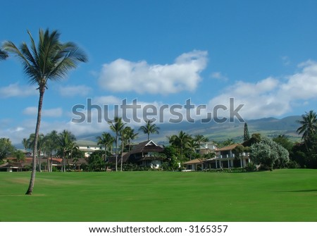 View of luxury villas in a beautiful landscape, green meadows, palm trees, mountains and deep blue sky