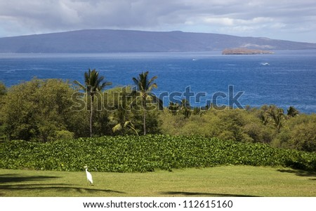 View of Molokini and Lanai from Wailea on Maui, Hawaii