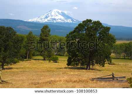 View of Mount Adams from Trout Lake, Washington
