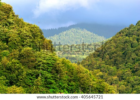 View of mountain forest trees and dramatic heavy blue sky. Natural landscape with sunny background. Green wood forest with clouds scenery. Russian nature, Sochi #405645721