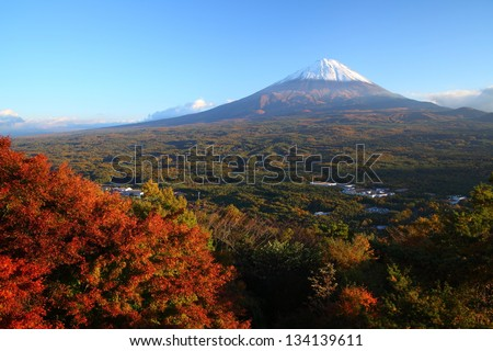 View of Mt. Fuji with Aokigahara forest in autumn, Yamanashi, Japan