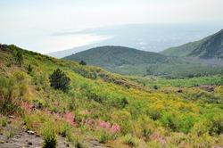 View of Naples from Slope of Vesuvius