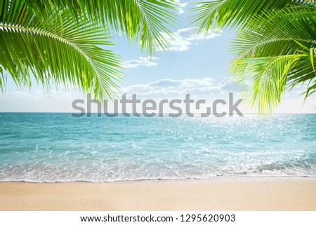 View of nice tropical beach with some palms #1295620903