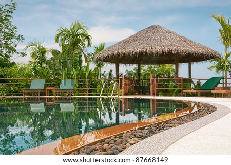 view of nice tropical pool  with exotic hut on the back