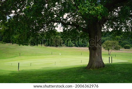 View of oak tree in full leaf towards putting green in midst of Westwood public parkland on fine summer morning in Beverley, Yorkshire, UK. Stock photo ©