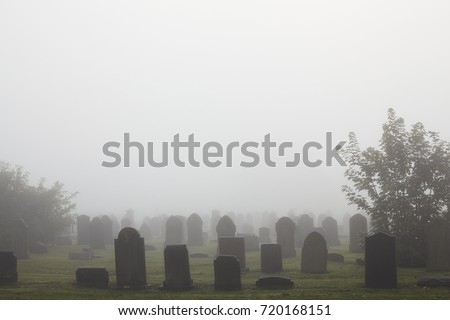 View of old cemetery park in the mist