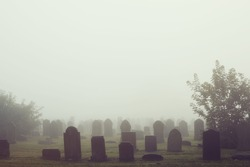 View of old cemetery park in the mist, vintage filter