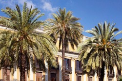 View of palm trees and historical, traditional, old buildings at famous city square called