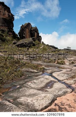 View of plateau of the Roraima tepui in morning - Venezuela, Latin America