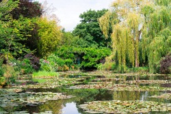 view of pond with water lilies in Giverny at summer day