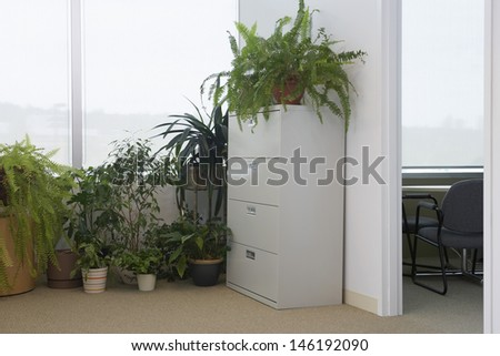 View of potted plants by office window