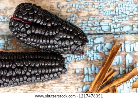 View of purple corn culli, Zea Mays