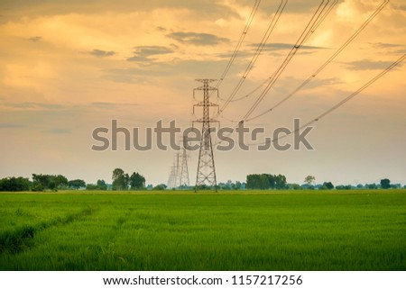 View of rice fields with high-voltage transmission lines and electricity Towers
