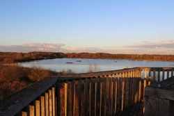 View of Rieselfelder Münster bird sanctuary (former sewage farm) from observation tower in autumn,  idyllic natural landscape with reed beds and wet grasslands in the evening sun.