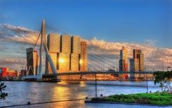 View of Rotterdam - Netherlands