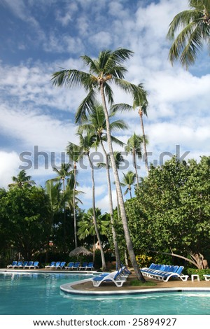 View of tall coconut palm trees and a pool at a beautiful tropical resort