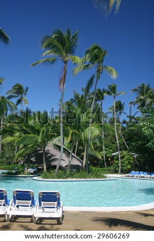 View of tall coconut palm trees at a beautiful tropical resort, pool side - stock photo