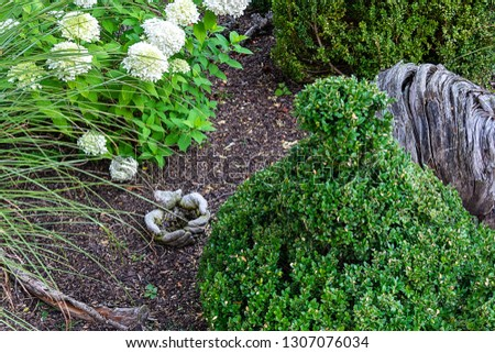 View of the alpine hill with Japanese eosklet and white hydrangea