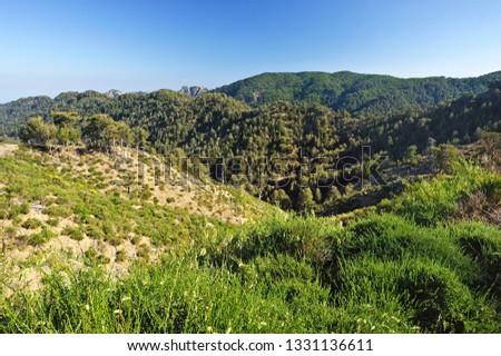 View of the Aspromonte National Park, San Luca, District of Reggio Calabria, Calabria, Italy #1331136611