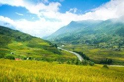 View of the beautiful valley with the green rice terraces field in the mountainous area during harvest time in Northern Vietnam near Sapa town