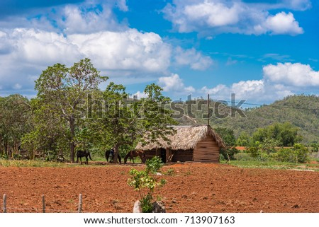 Shutterstock View of the building in the valley of Vinales, Pinar del Rio, Cuba. Copy space for text