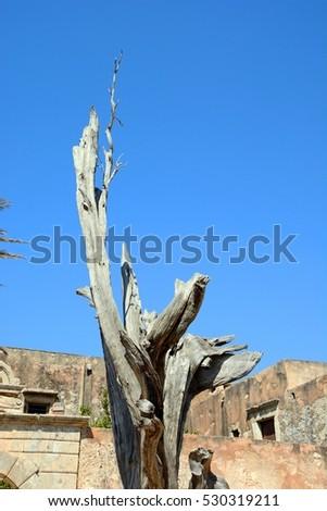 View of the bullet tree at Arkadi Monastery, Arkadi, Crete, Greece, Europe. #530319211