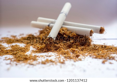 View of the cigarettes and tobacco. Tobacco use is a risk factor for many diseases, especially those affecting the heart, liver, and lungs, as well as many cancers.